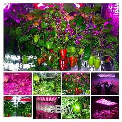 1000W Dual Chips Full Light Spectrum LED Plant Grow Lamp Indoor Medical Care