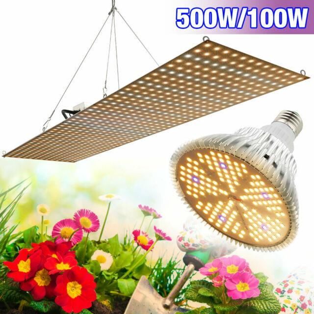 500w Dimmable Warm Full Spectrum Led Grow Light For Hydroponic Plant Growth Lamp