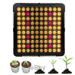 6000W Full Spectrum Grow Light 300 LED Plant Growing Lamp For Flower Hydroponic