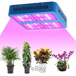 Full Spectrum 300With1000/2000W /3000W LED Grow Light Flower Indoor Plant Lamp