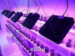 Growstar 360w Mcob Plant Grow Light Lamp for Greenhouse, Hydroponics, Greenhouse